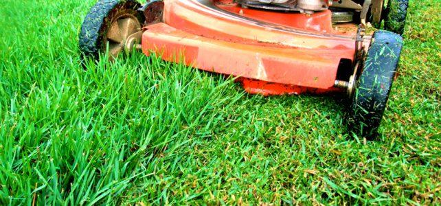 Grass cutting hits peak season